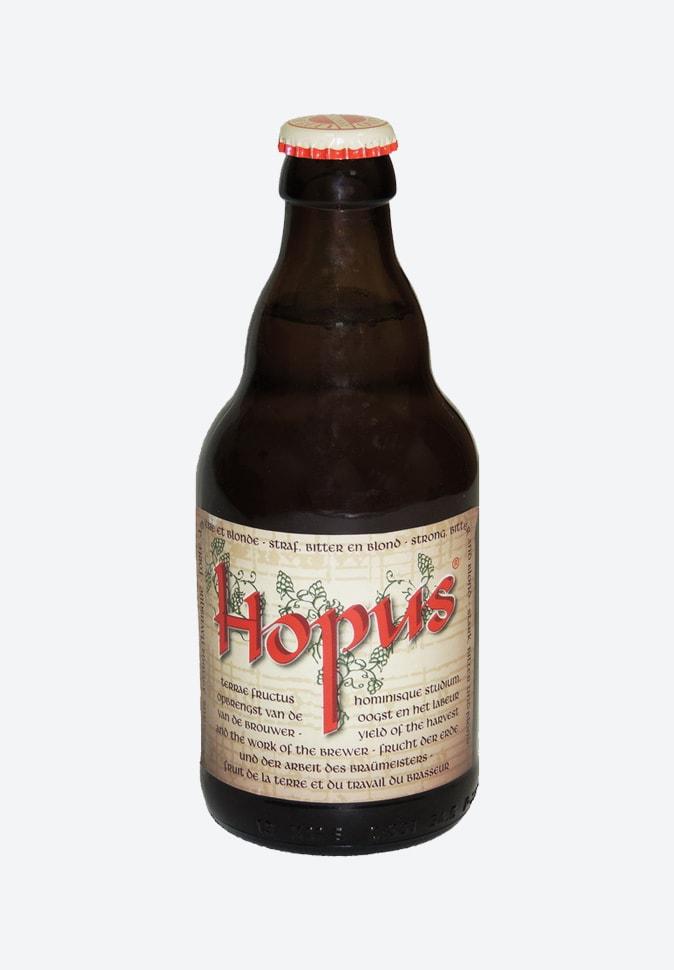 Пиво Хопус