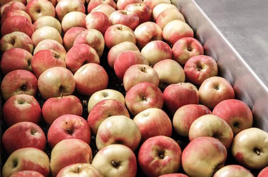Яблоки Val De Rance